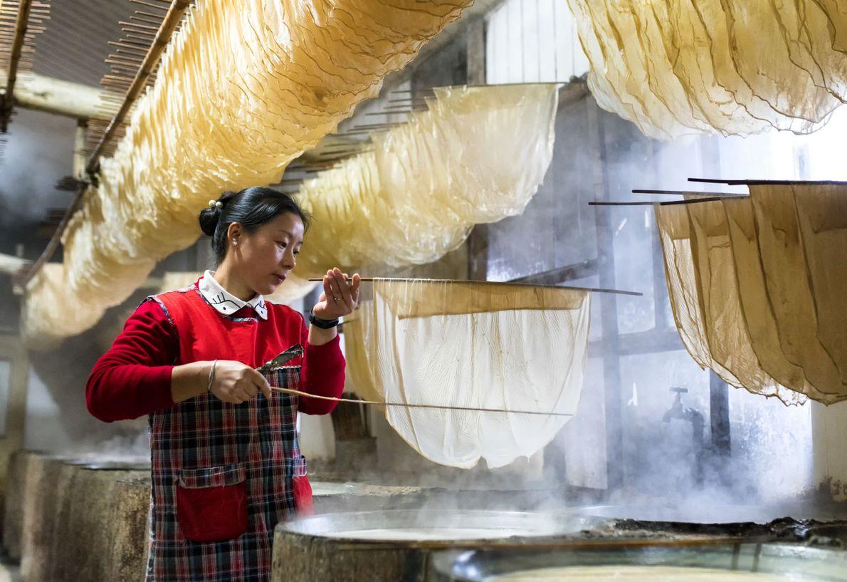 Herstellung von Tofuhaut