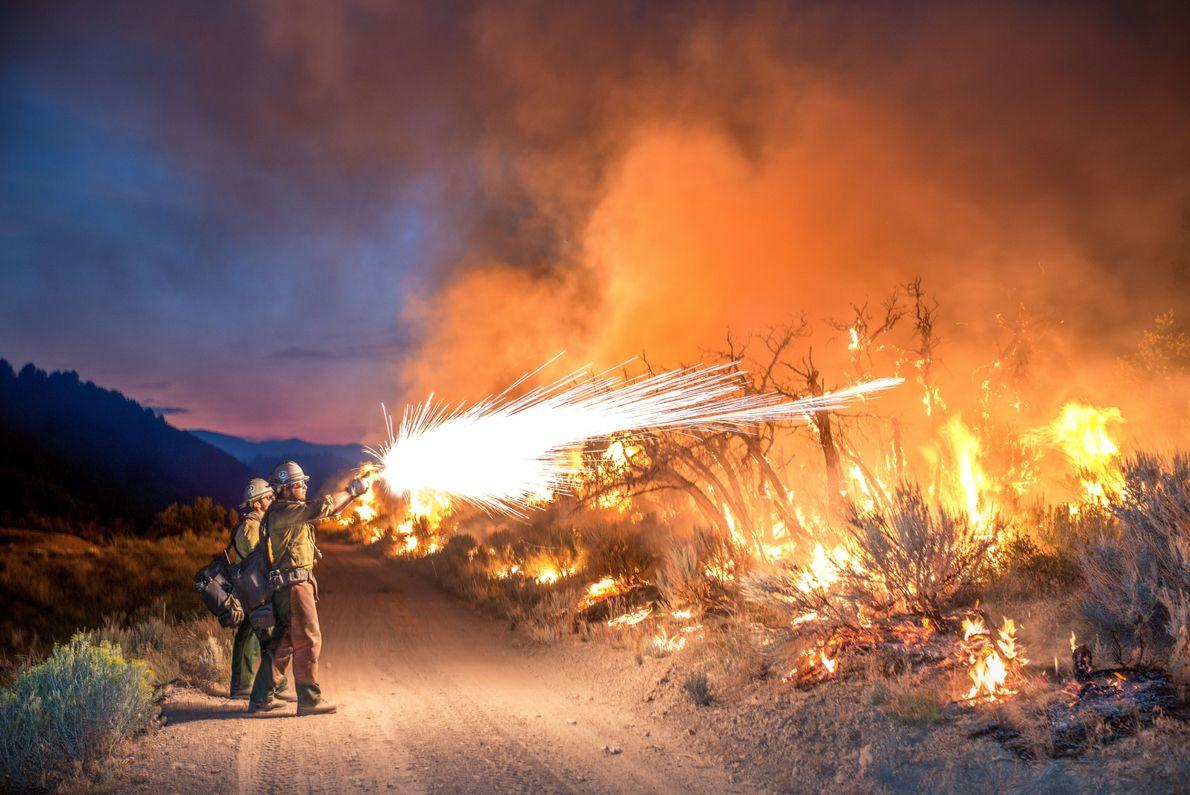 Feuer mit Feuer bekämpfen