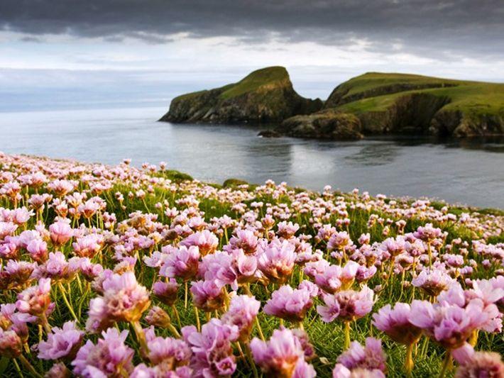 Die Küste von Fair Isle, Schottland