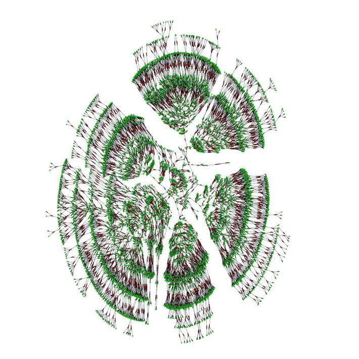 Beeindruckende Ahnenforschung: Diese Darstellung zeigt den Familienstammbaum aus einem riesigen Datensatz. Er zeigt 6.000 Individuen aus ...