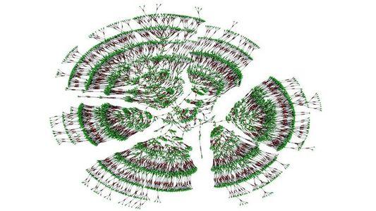 Forscher erstellen Stammbaum mit 13 Millionen Menschen