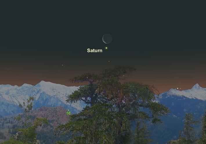 Am 11. Februar wird der Mond dicht am cremefarbenen Saturn vorbeiziehen.