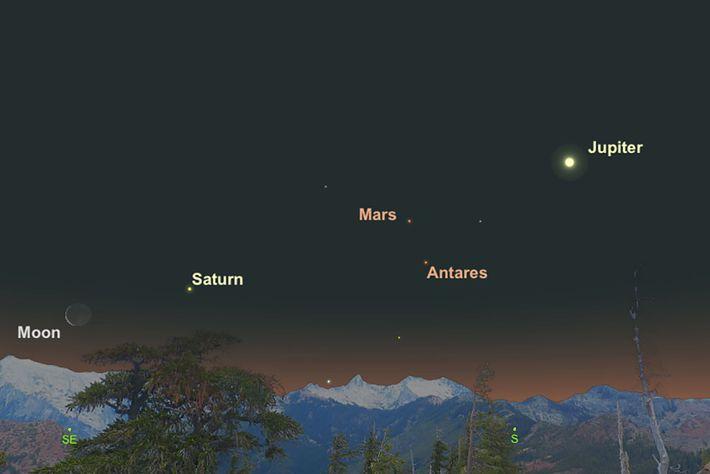 """Mars und sein """"Rivale"""" Antares treffen sich am 12. Februar."""