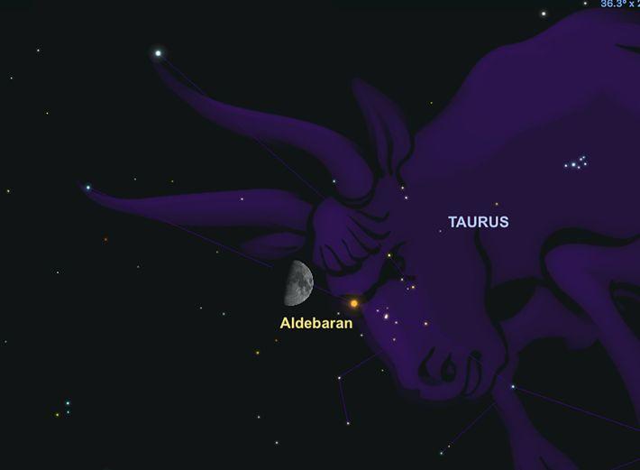 Am 23. Februar verdeckt der Mond für eine kurze Zeit den Stern Aldebaran im Sternbild Stier.