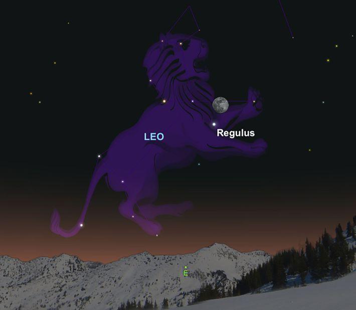 Am 28. Februar stattet der Mond dem hellen Stern Regulus einen kleinen Besuch ab.