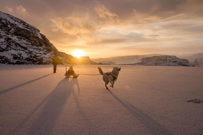 Auf der Eisdecke vor der Küste Grönlands spielt Ghislain Bardout während des kurzen Sonnenscheins mit seinem ...
