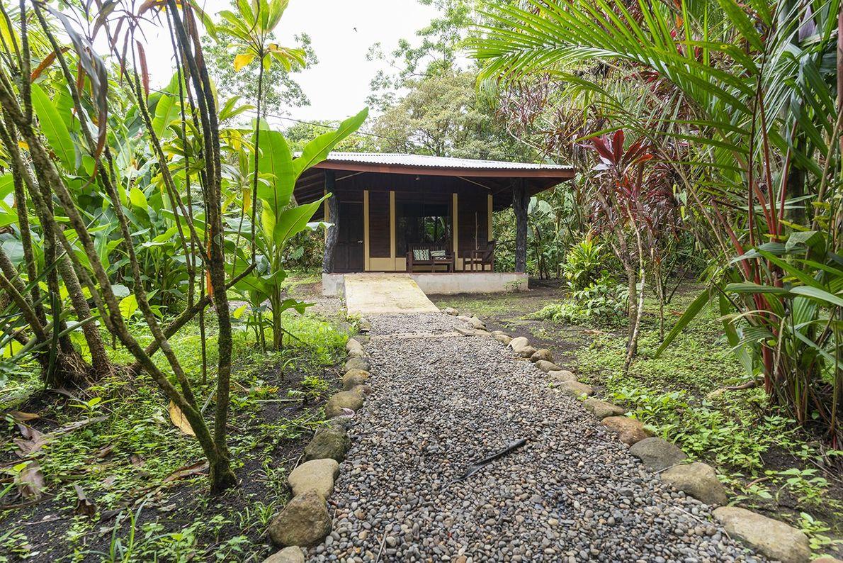 Die Häuschen der Finka Verde wurden in den Dschungel integriert, sodass die Gäste das Leben in …