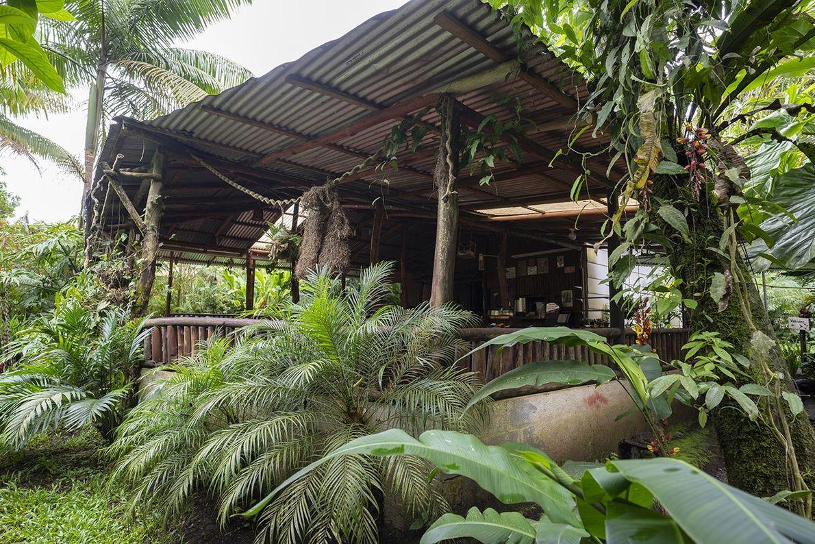 Das Restaurant der Finka Verde ist in die Natur eingebettet. Hier werden den Gästen die selbst ...