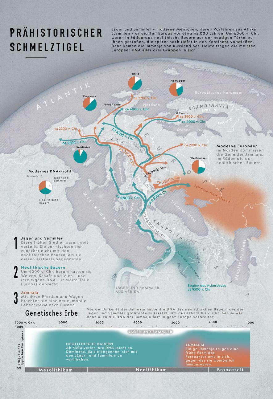 Wer waren die ersten Europäer?