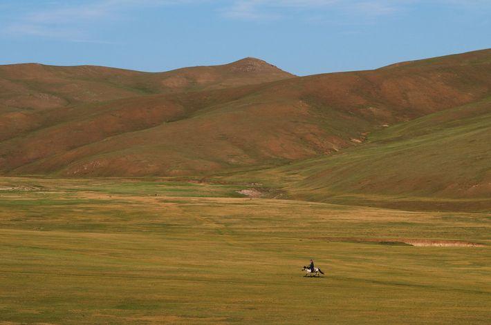"""Der Berg Bogd Khan, was sich grob als """"heiliger König"""" übersetzen lässt, gilt vielen Mongolen als ..."""