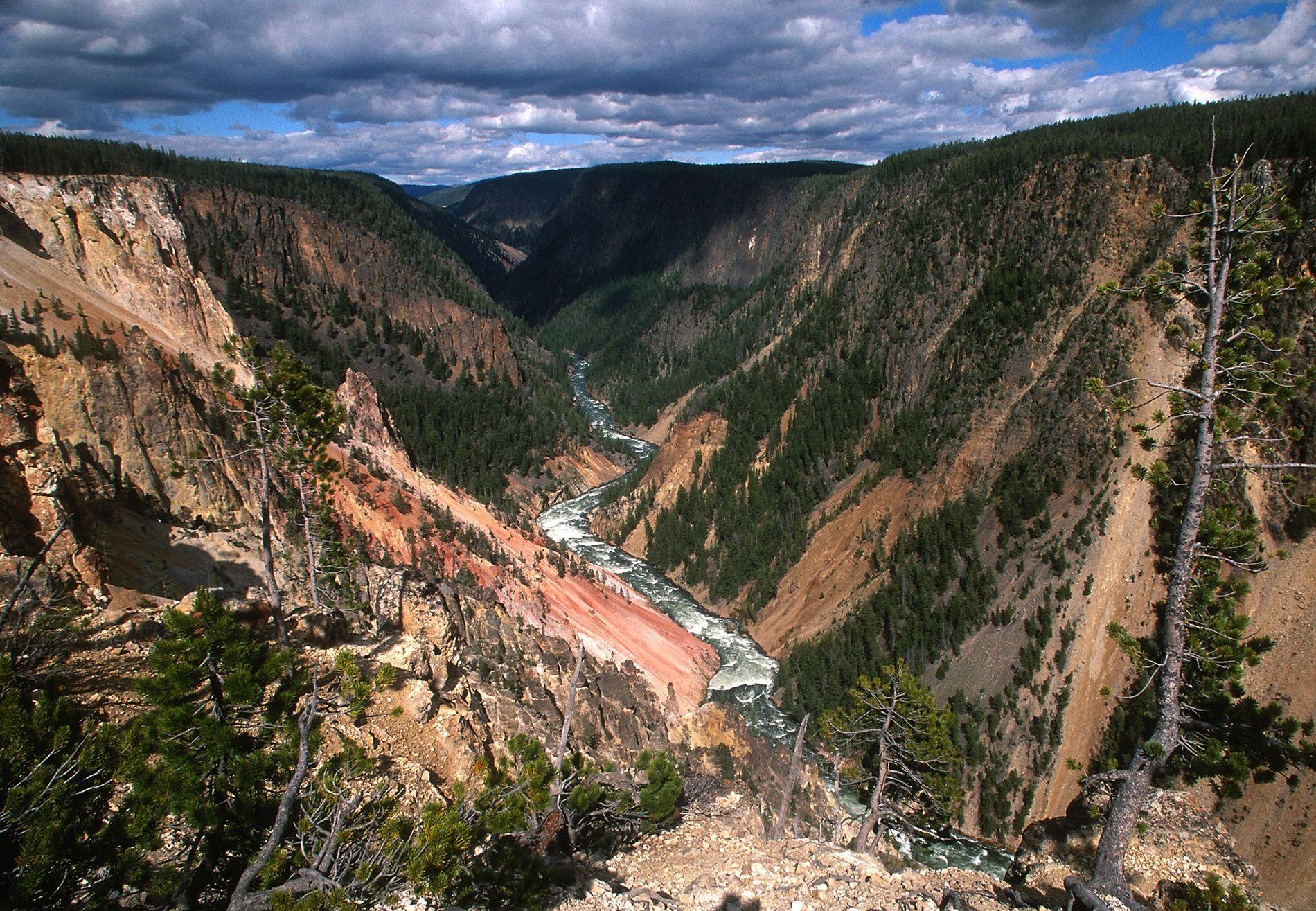 Trotz Budgetkürzungen und Waldbränden fesselt die Schönheit des Yellowstone-Nationalparks weltweit noch immer Millionen von Menschen.