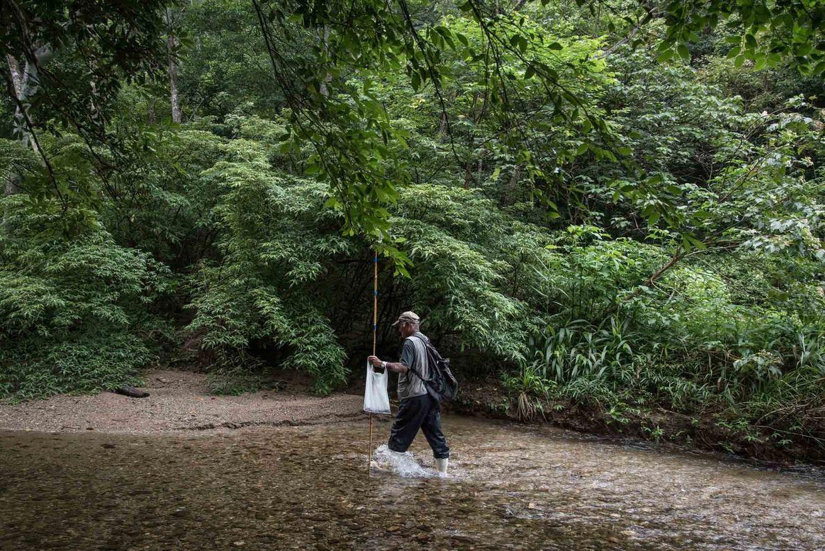 Die Bewohner des subtropischen Ogimi profitieren von der atemberaubenden Naturlandschaft des Gebiets, zu der auch Wanderwege ...
