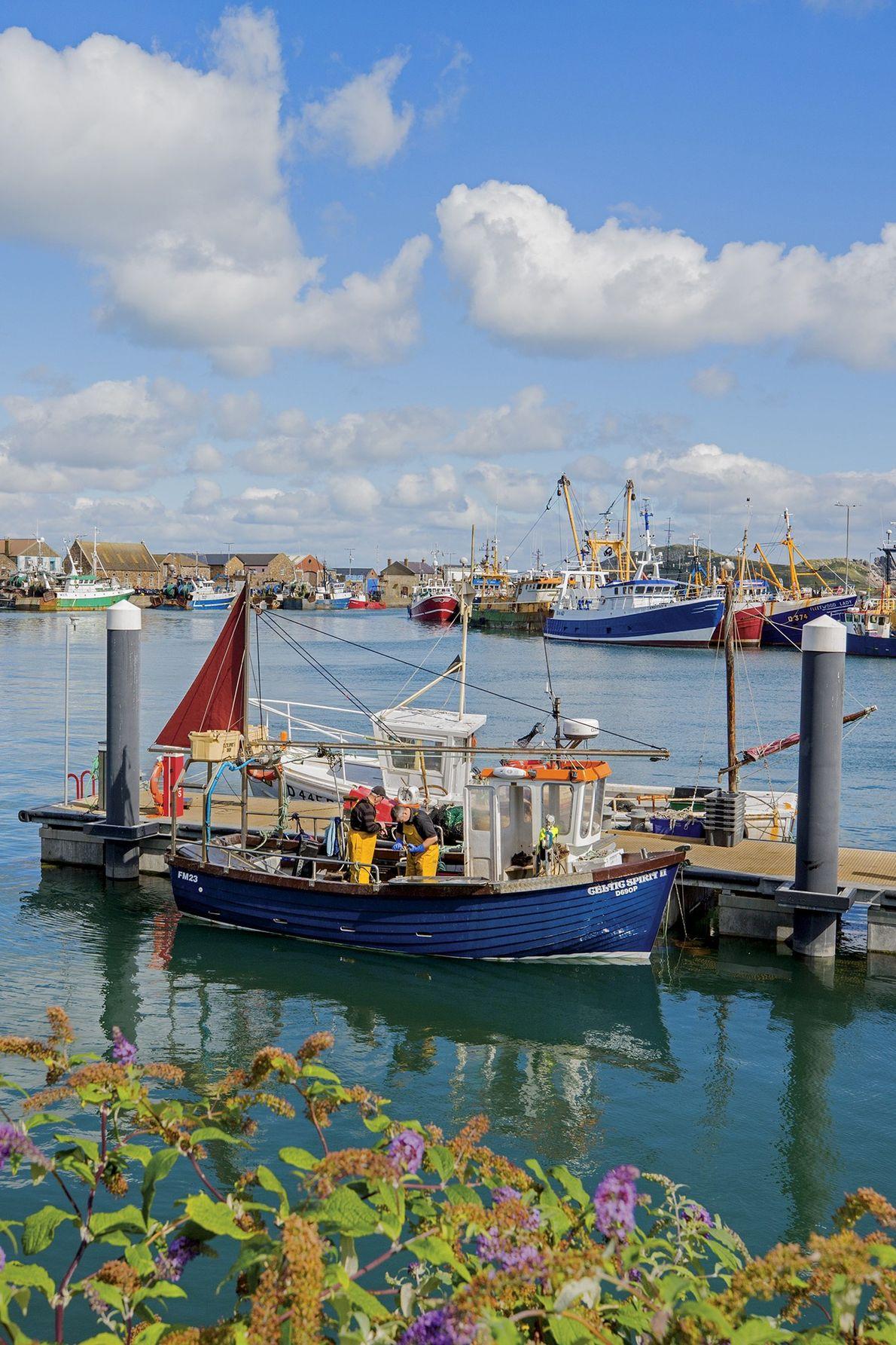 Zwei Männer arbeiten auf einem Fischerboot, das im Hafen von Howth auf der Halbinsel Howth Head ...