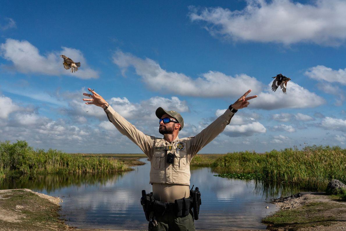 Vogelrettung
