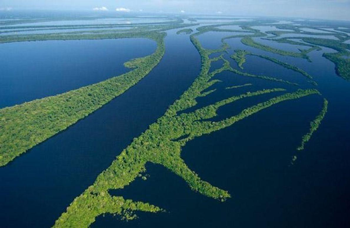 Von März bis Juli weitet die Regenzeit den Lebensraum der Delfine aus -in die überfluteten Ebenen …