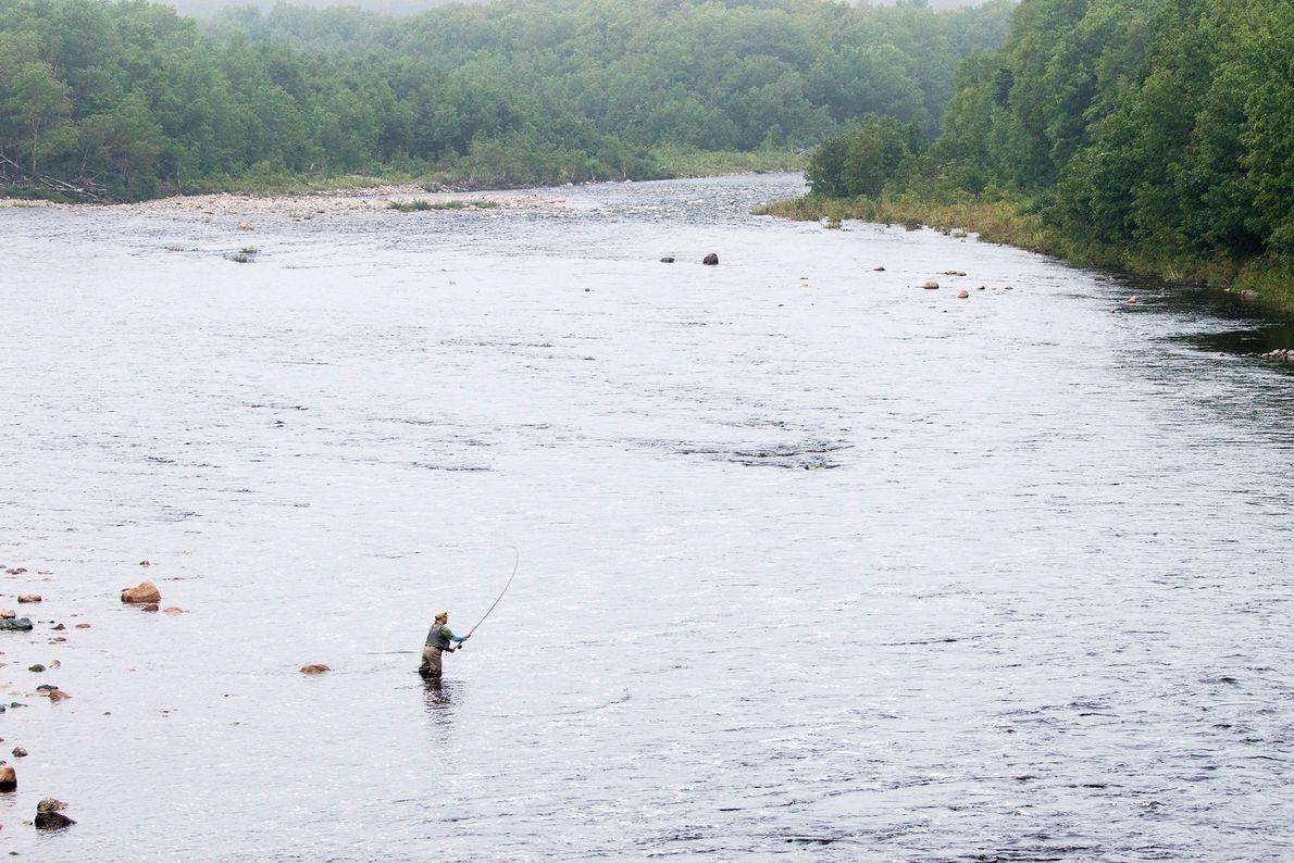 Chéticamp River