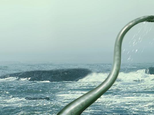 Antarktis-Fund: Das schwerste Plesiosaurier-Fossil der Welt