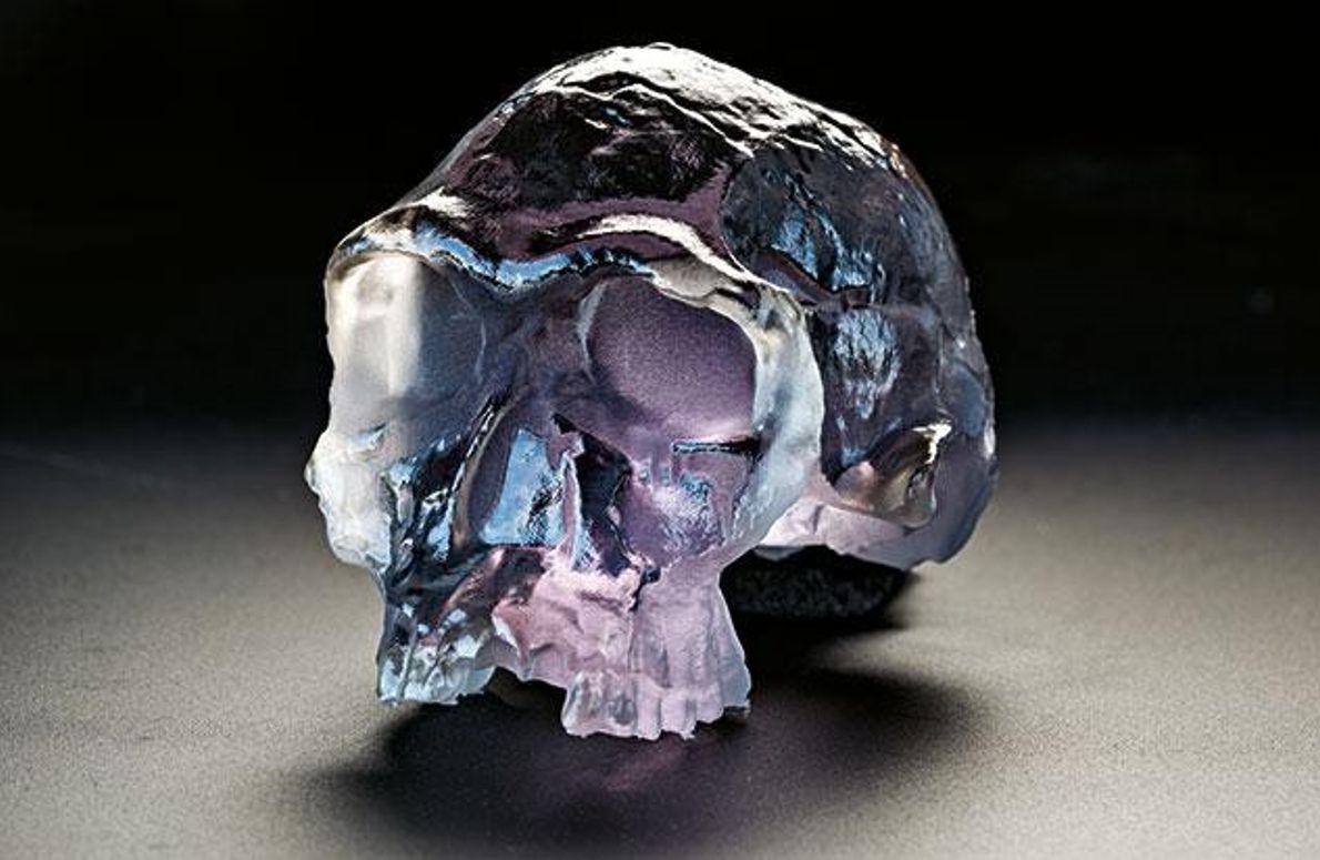Fossilien per 3-D-Druck