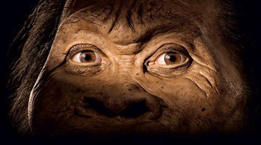 Homo naledi – Einer von uns?