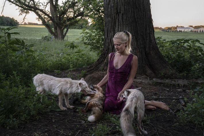 """Umgeben von Füchsen sitzt Raines auf ihrem Grundstück vor einer großen Eiche. """"Ich war ganz fasziniert ..."""