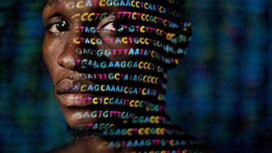 Die vier Buchstaben des genetischen Codes – A, C, G und T – werden auf den ...