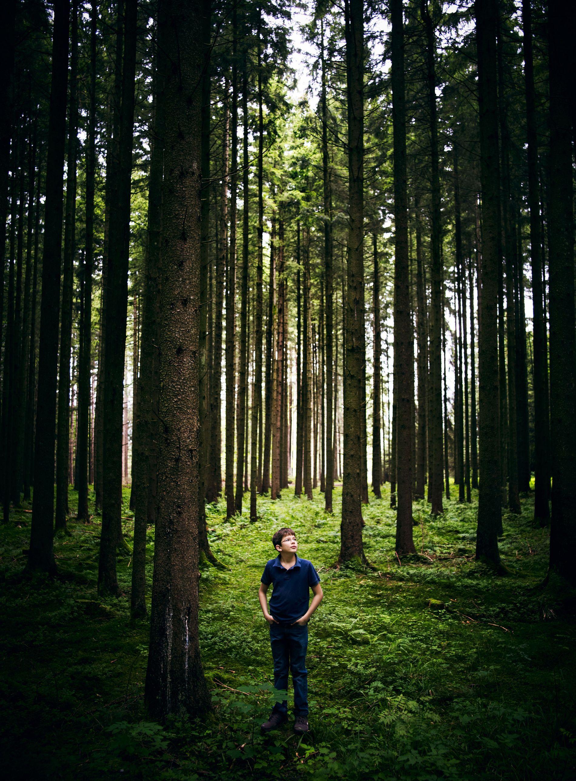 Felix Finkbeiner, hier zu sehen auf einem Foto aus dem Jahr 2011, hat sich das Pflanzen von Bäumen zur Lebensaufgabe gemacht. Damit ist er nicht allein.
