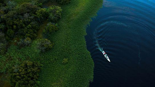 Der Maciel-See im Mamirauá-Reservat für nachhaltige Entwicklung im brasilianischen Bundesstaat Amazonas.