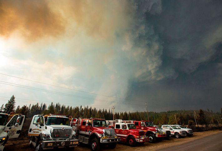 Eine Sturmzelle saugt den Rauch des Hog-Feuers am 21. Juli 2020 in sich auf.