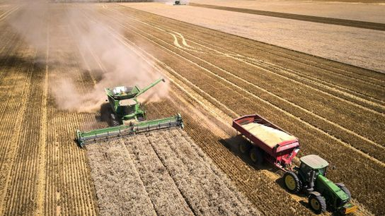 Der Mensch veränderte die Landschaften der Erde schon viel früher als gedacht durch Aktivitäten wie Landwirtschaft ...