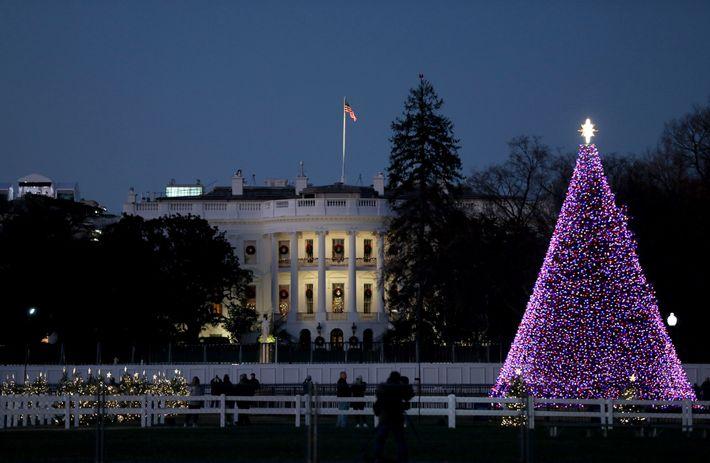 Weihnachtsbaum Weißes Haus