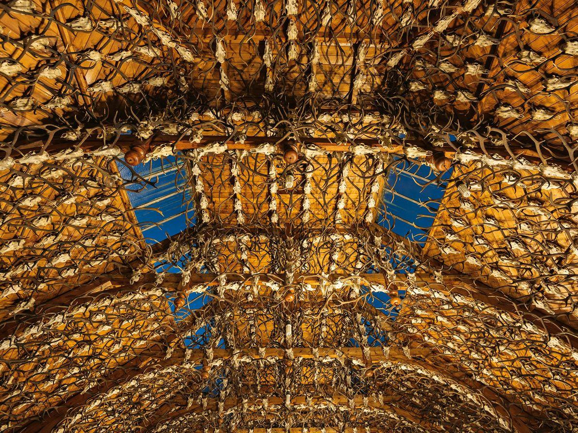 2435 Geweihe hängen im Hirsch-Ballsaal auf dem Anwesen Mar Lodge, der Ende der 1890er-Jahre vom Duke ...