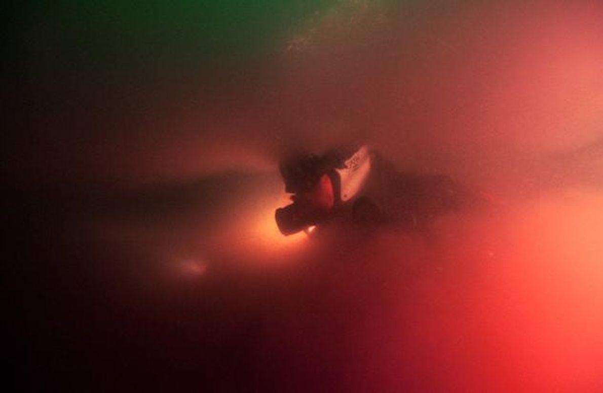 """In der """"Sawmill Sink"""" taucht der Expeditionsleiter Kenny Broad zügig durch die Bakterienschicht hinab."""