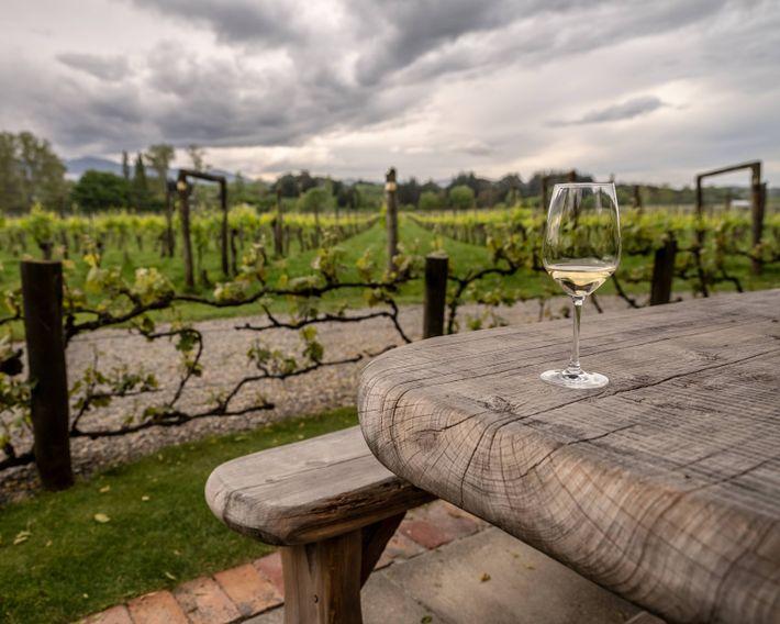 Ein Glas Chardonnay im Garten des Weinguts Neudorf bei Nelson.
