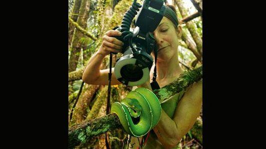 Galerie: Papua-Neuguinea - Leben mit dem Vulkan