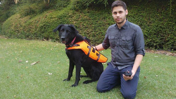 Hund reagiert auf Vibrationsbefehle einer neuartigen Weste