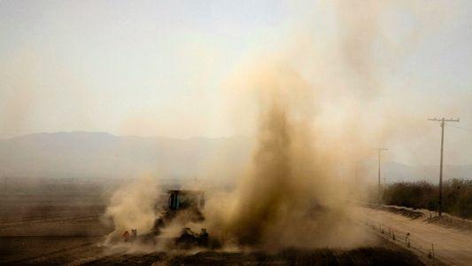 Luftverschmutzung: Tausende Tote durch Emissionen aus der Fleischproduktion