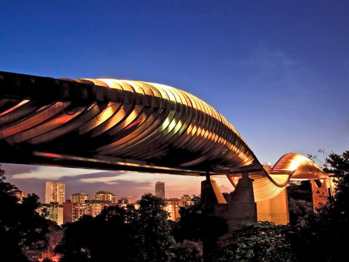 Stahl und lokales Balau-Holz verschmelzen zu den organischen Henderson Waves, der höchsten Fußgängerbrücke Singapurs.