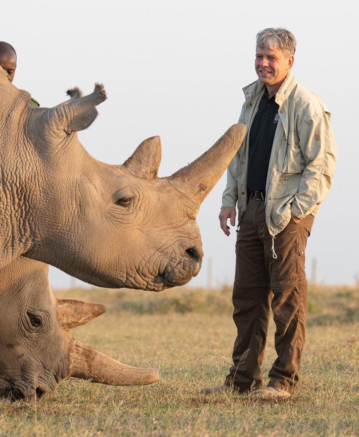 Thomas Hildebrandt mit Najin und Fatu in Kenia. Hildebrandt ist Leiter der Forschungsgruppe Reproduktionsmanagement am Leibniz-Institut ...