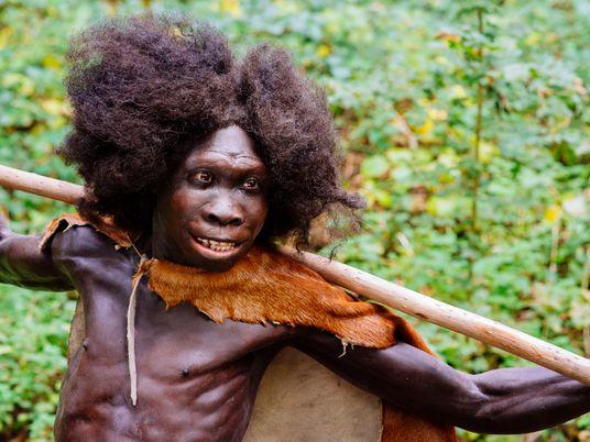 Steinzeitmenschen: Fleisch war ihr Gemüse