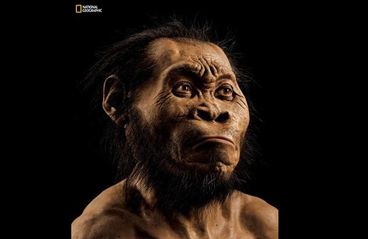 Obwohl Homo naledi optisch stark an unsere primitiven Vorfahren erinnert, scheint er bereits menschliches Verhalten praktiziert …