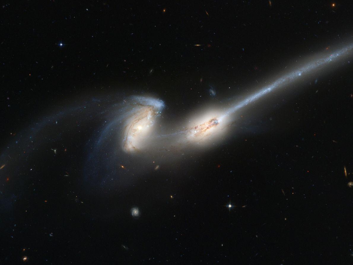 Milchstraße und die Andromedagalaxie