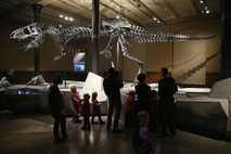Besucher sehen sich Tristan den Tyrannosaurus rex im Berliner Museum für Naturkunde an. Es ist eines ...
