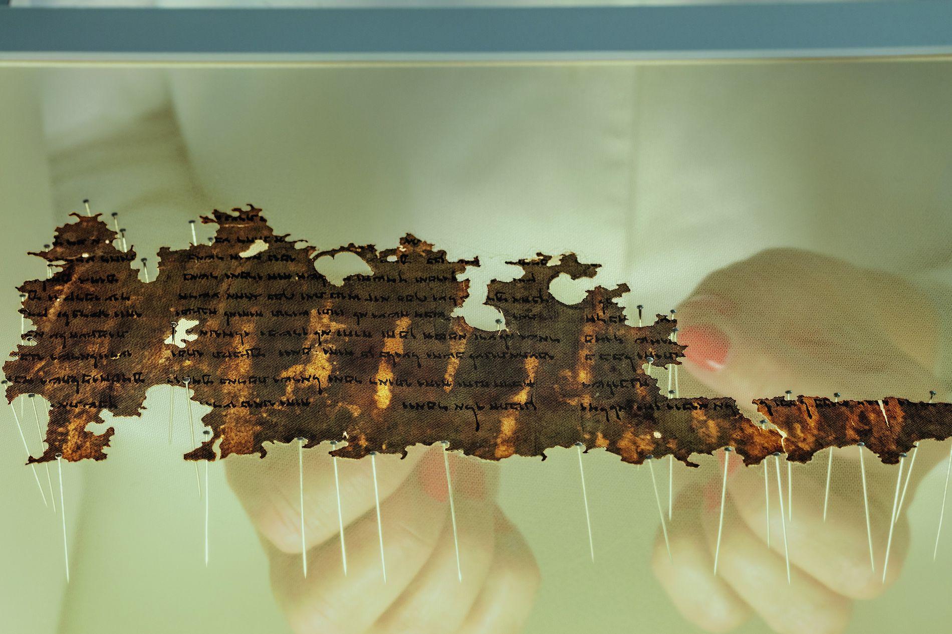 Eine Konservatorin der israelischen Antikenbehörde hält ein Fragment der Schriftrollen vom Toten Meer. Zum Schutz liegt ...
