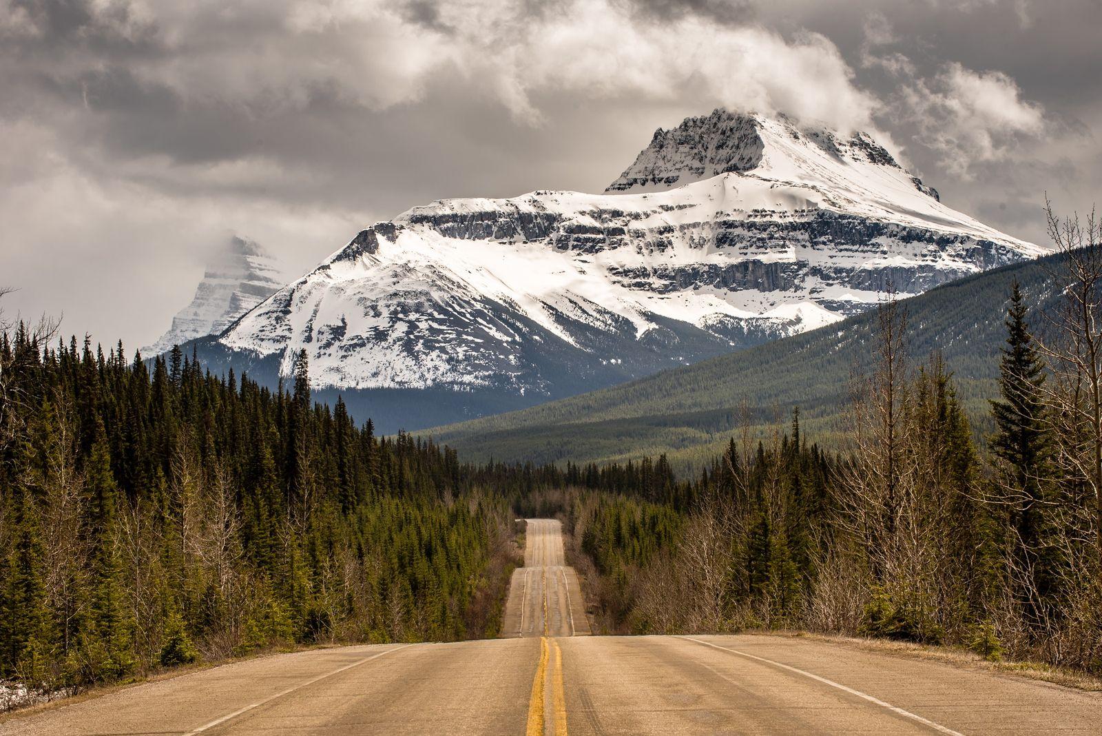 Der Icefields Parkway verläuft in Richtung der kanadischen Rocky Mountains und des Jasper-Nationalparks.