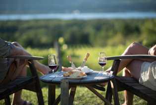 Die Verkostung der Weine im französischen Stile erfolgt direkt auf den Weinbergen der Île d'Orléans.