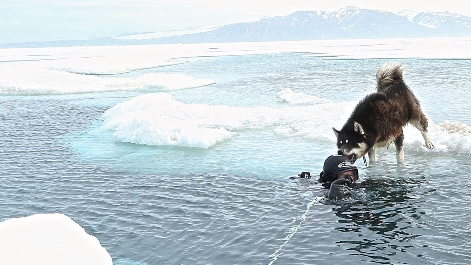 Paul Rose Expedition Arktis
