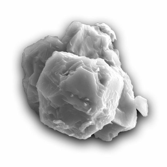 Diese Aufnahme aus einem Rasterelektronenmikroskop zeigt eines der in dieser Studie datierten Körner. An seiner längsten ...