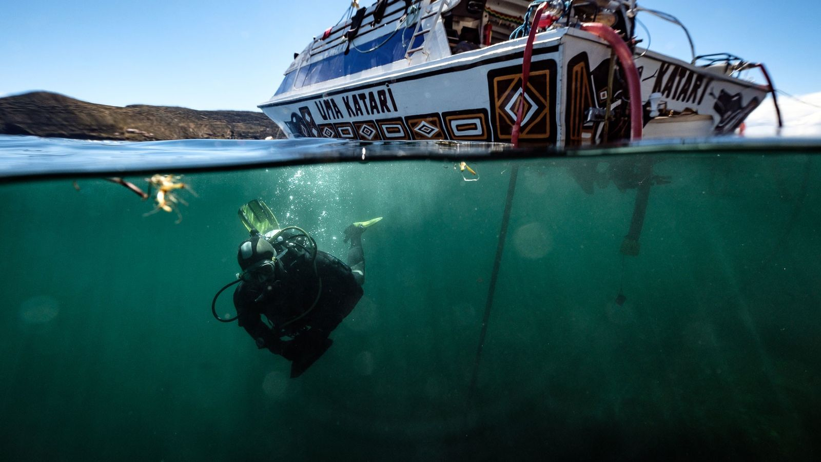 Ein Mitglied des Forschungsteams taucht in den Titicacasee, der durch die Grenze zwischen Bolivien und Peru ...
