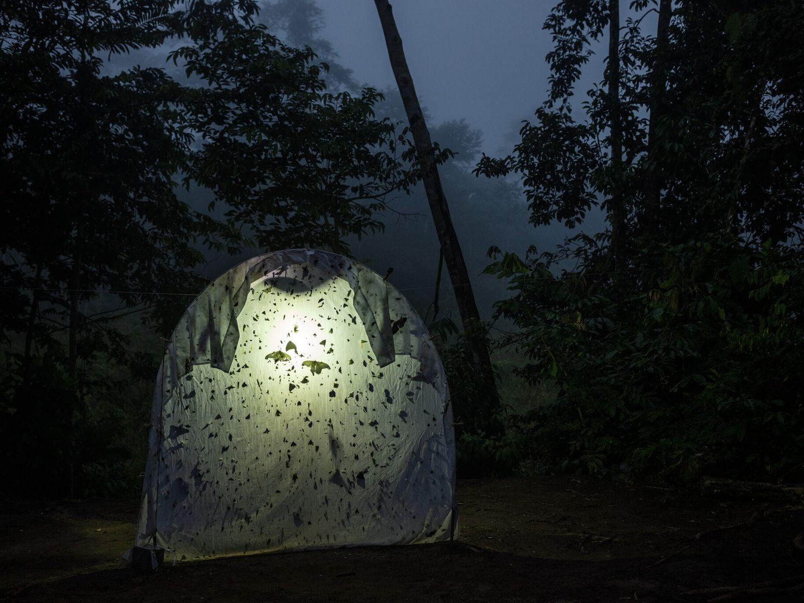 Feldforschungsstation in Ecuador