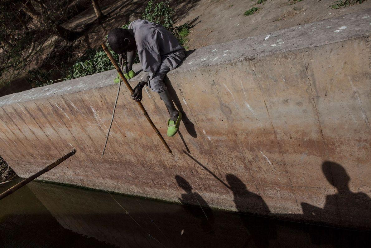 Jungen fischen